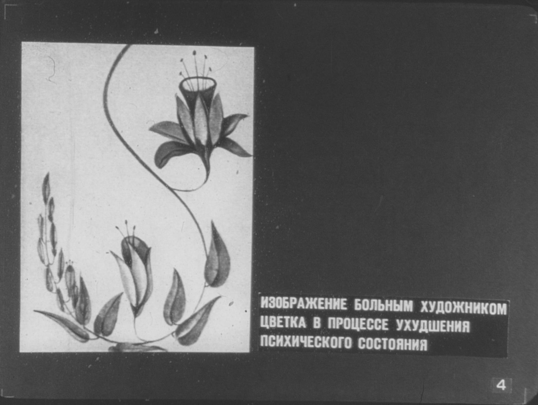 Изображение больным художником цветка в процессе ухудшения психического состояния