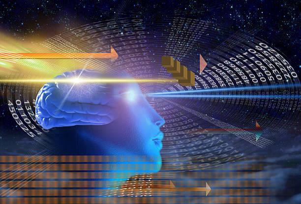 Мозг и две стратегии мышления: парадоксы и гипотезы.