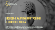 Половые различия в строении головного мозга